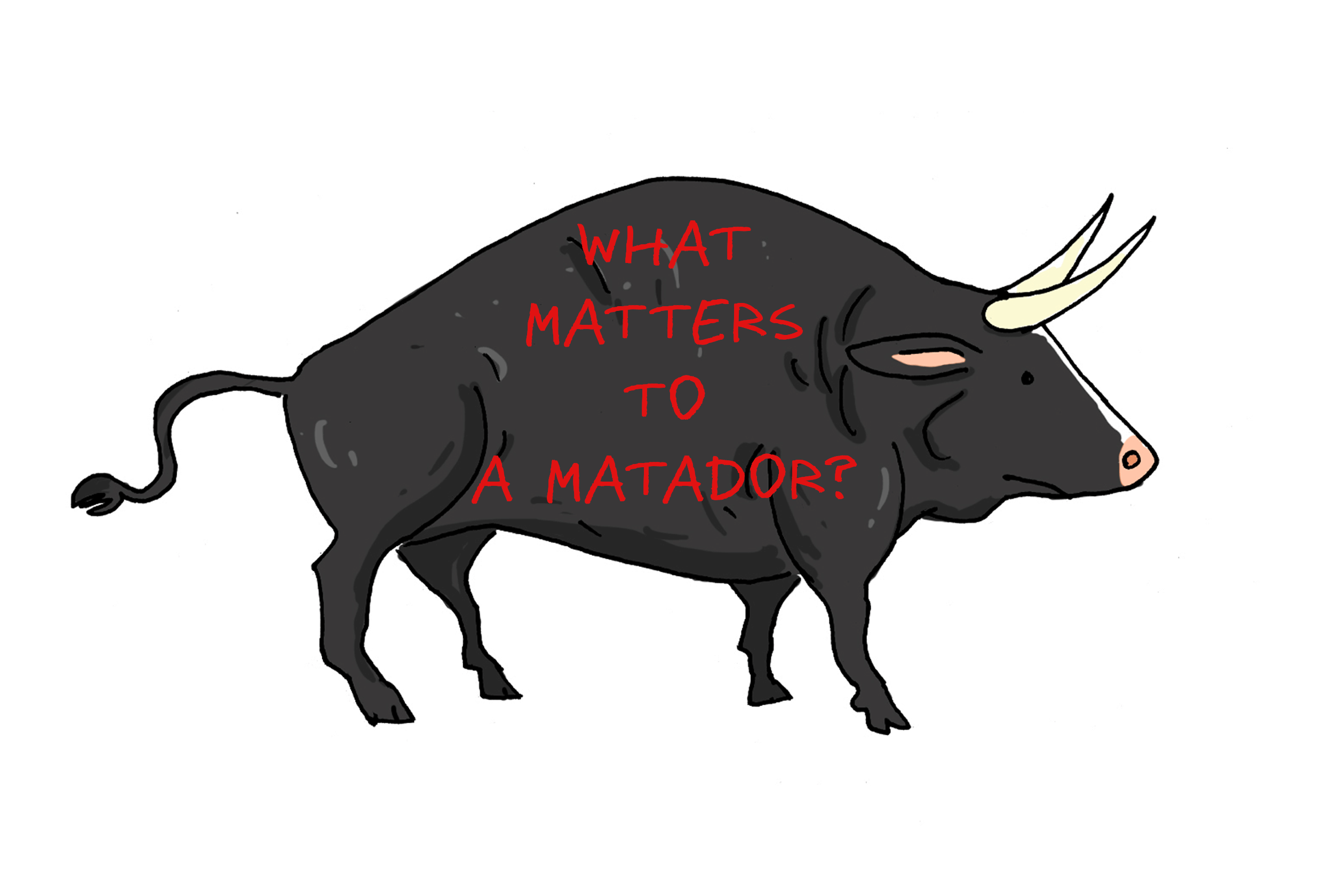 WHAT MATTERS TO A MATADOR?